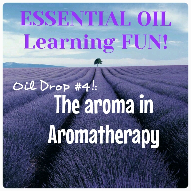 Oil Drop #4:  The Aroma in Aromatherapy!